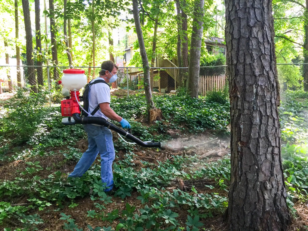 atlanta-mosquito-treatment-lawn
